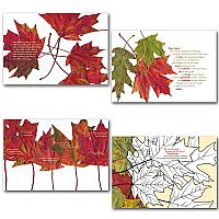 Disposable Thanksgiving Placemat Assortment