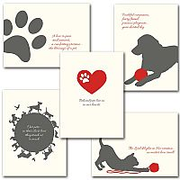 Pet Sympathy Assortment