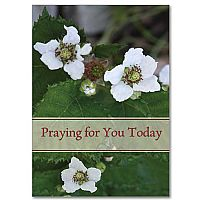 Praying for You Today