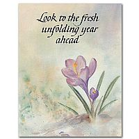Look to the Fresh Unfolding Year Ahead