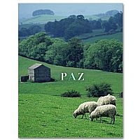 Gaelic Words: Paz
