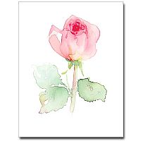 Watercolor Rose Petite Notes